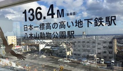 跟着伊坂幸太郎的脚步游仙台(下)