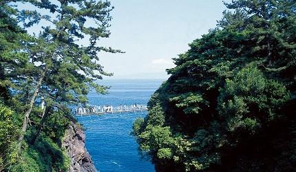 东京近郊还有这里!充满魅力的游玩好去处──伊豆高原景点介绍