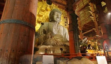 奈良公园散步指南:精选12景