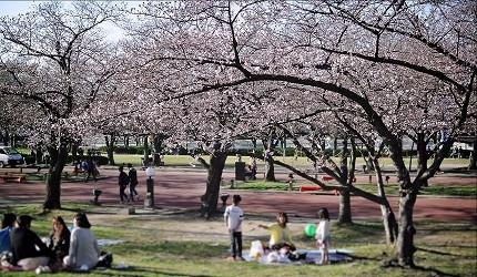 一起到大阪世外桃源「日本万国博览会纪念公园」被青翠绿树与美丽花海包围吧!